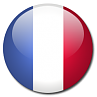 flag button - french